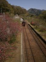 神戸駅列車バイバイ!