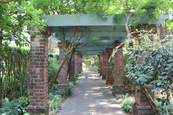 英国庭園 4