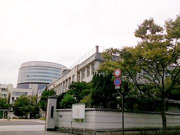 20131112-4.jpg