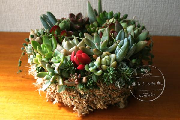 wreath2013_yoko.jpg