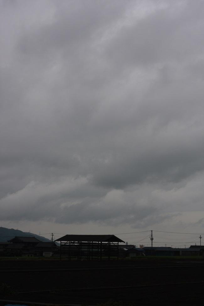 824穀雨