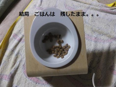 20130726mu5.jpg