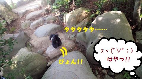 20130909mu4.jpg