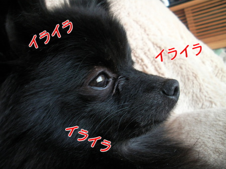 2014,01,28-01