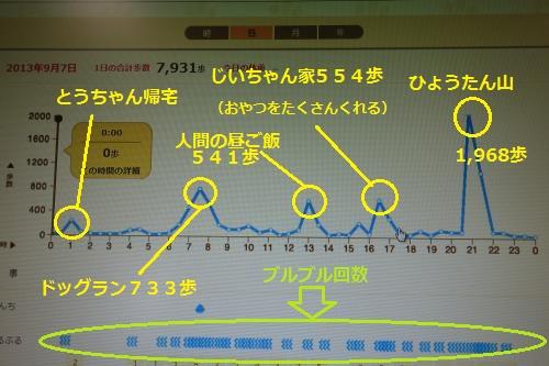 9月7日(土)グラフ