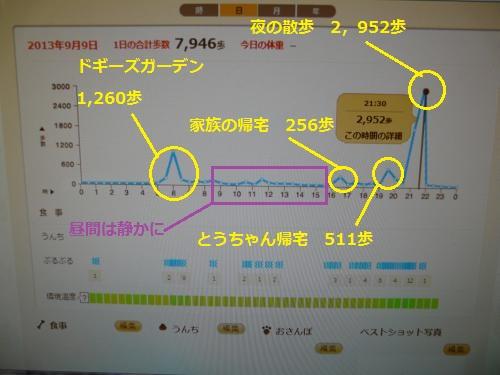 9月9日グラフ