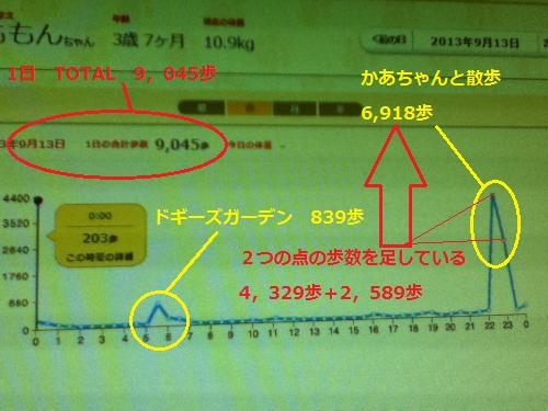 9月13日歩数グラフ