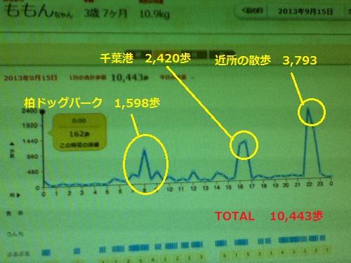 9月15日歩数グラフ