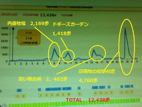 9月16日歩数グラフ