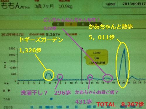 9月17日歩数グラフ