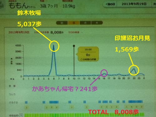 9月19日歩数グラフ