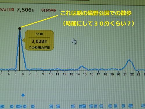 P1250792_convert.jpg
