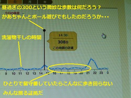 P1250794_convert.jpg