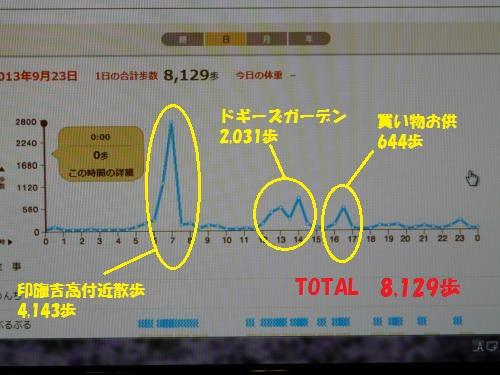 P1280791_convert.jpg