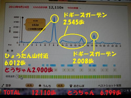 P1280929_convert.jpg