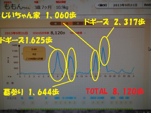 P9230003_convert.jpg