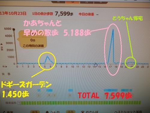 PA231666_convert_2013102323294400d.jpg