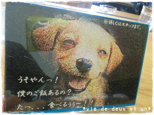 20130921blog4.jpg