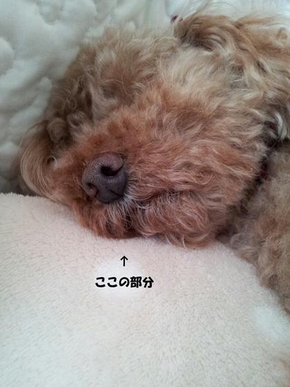 CN_2013_0724_1128_33.jpg