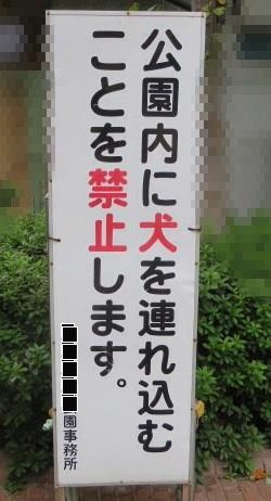 20131019194758512.jpg