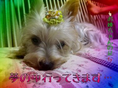 image_20130907215544151.jpg