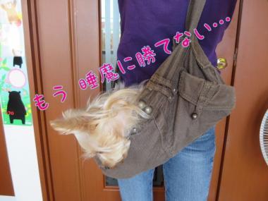image_20130917221831034.jpg