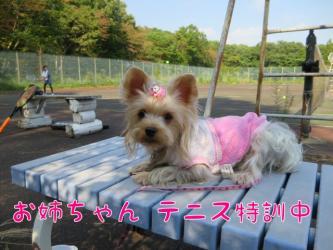 image_20130924182408500.jpg