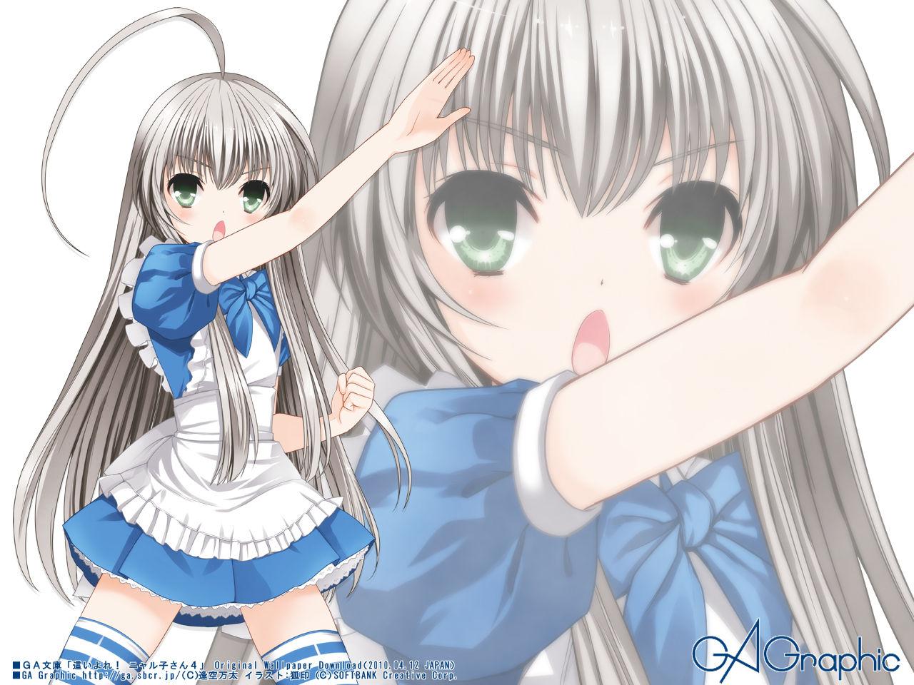http://blog-imgs-61.fc2.com/k/y/a/kyarasokuhou/nyarukosan.jpg