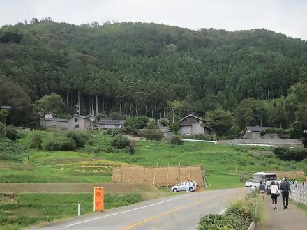 IMG_5595 2013 稲刈り (75)