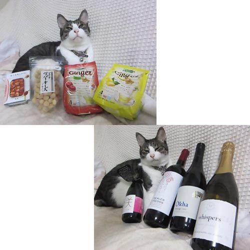 catsワイン
