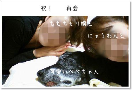 DSC_0001 2012 12 (31)