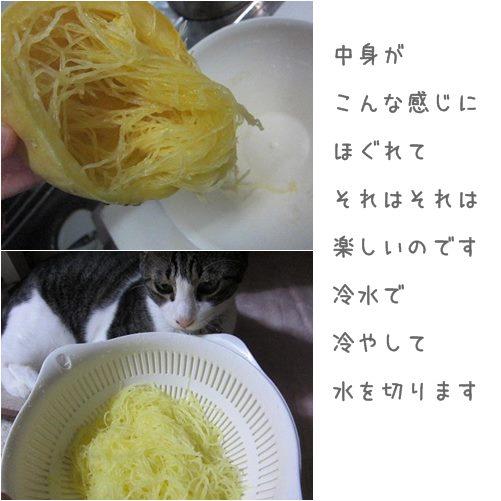 cats2_20130910193216222.jpg