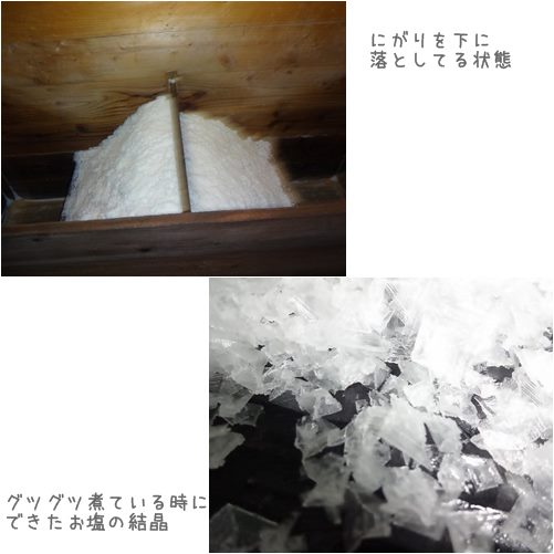 cats5_20130727160420.jpg