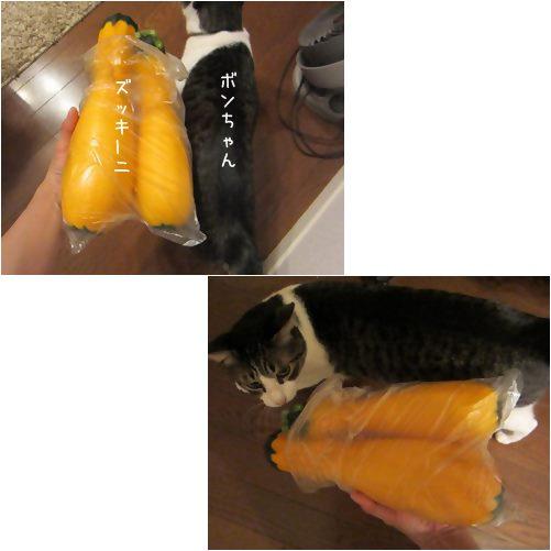 cats_20130730013718.jpg