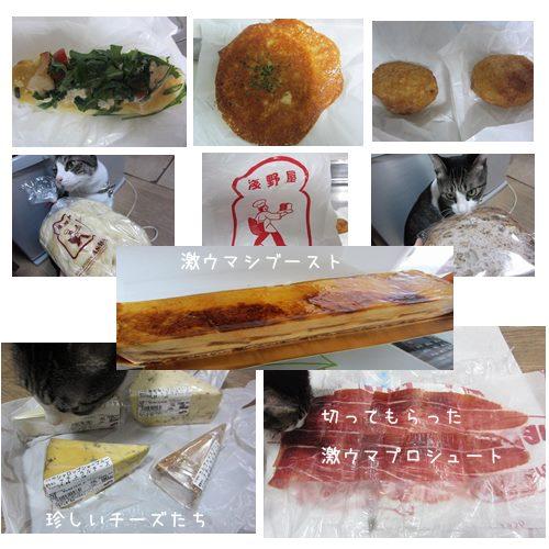 cats_2013092719234618d.jpg