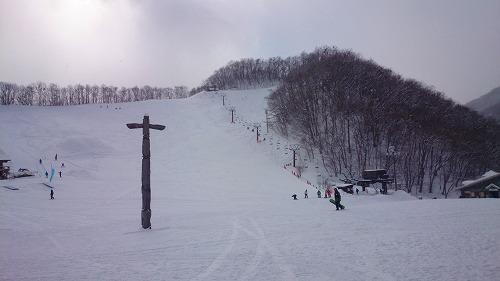 尾瀬DSC_0023