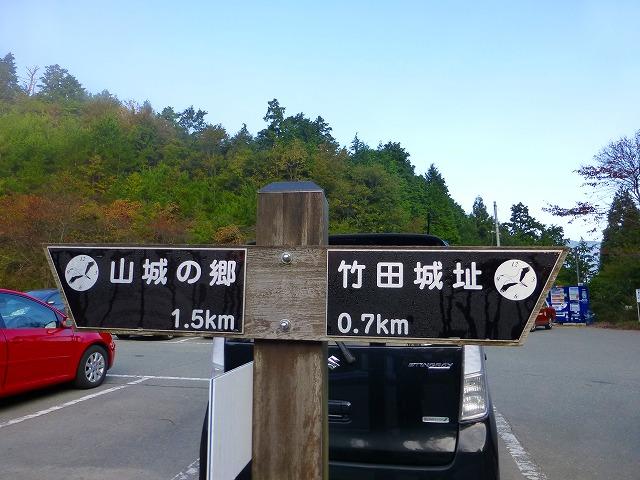 P1000129竹