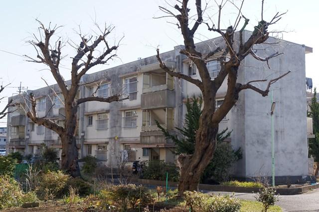 神奈川県営鶴ヶ峰団地の3階建て住棟