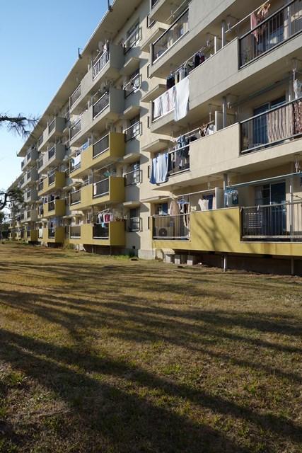 公団浜見平団地の住棟南側芝生