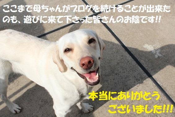 IMG_2038-23.jpg