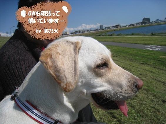 IMG_6322-06.jpg