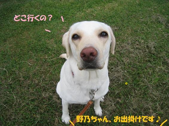 IMG_6466-27.jpg