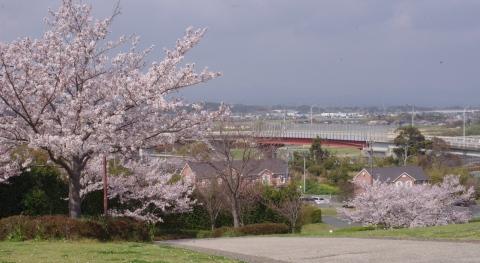 330_7愛野公園