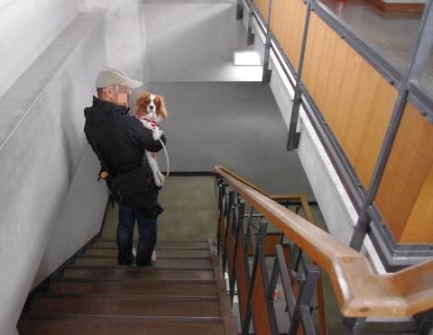 420_13館内階段