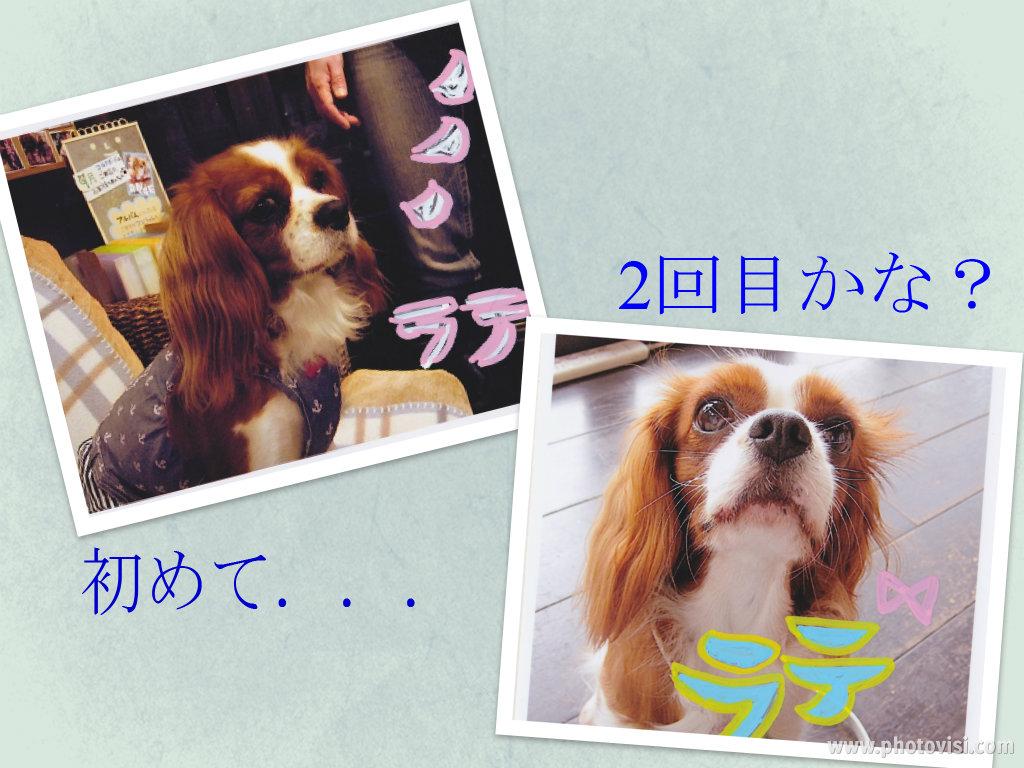 713_10以前の写真