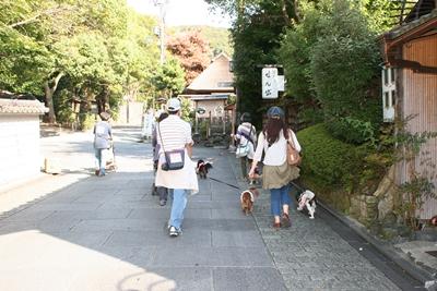 京都散策_0073散策