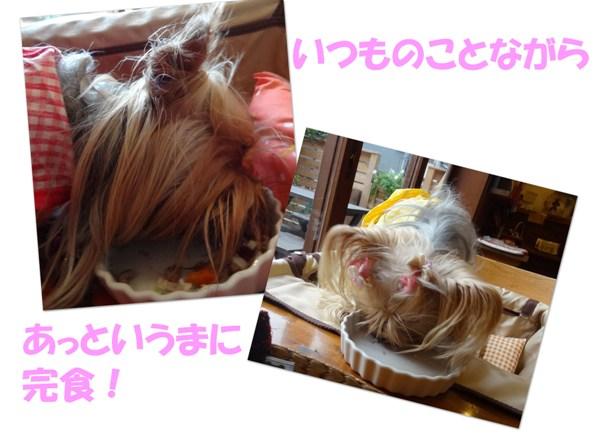 5 eat! eat! eat!