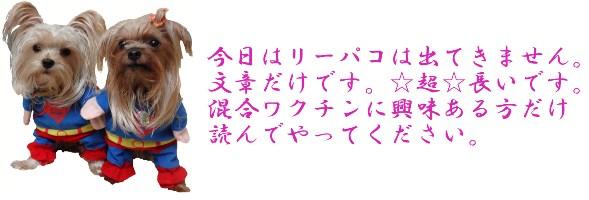 DSC05127 - コピーのコピー