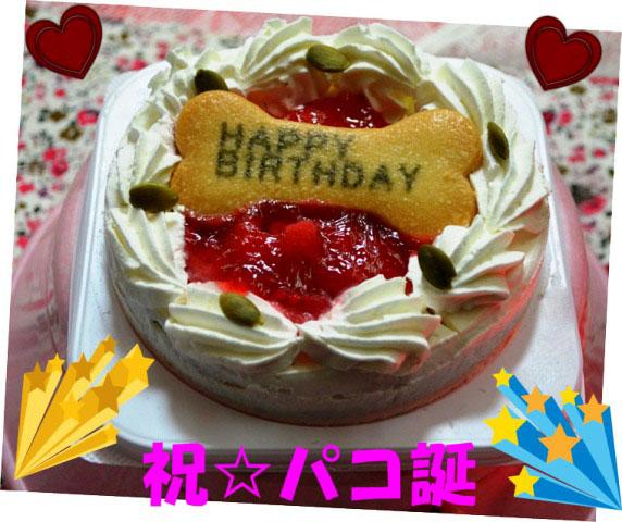 7パコ誕ケーキ