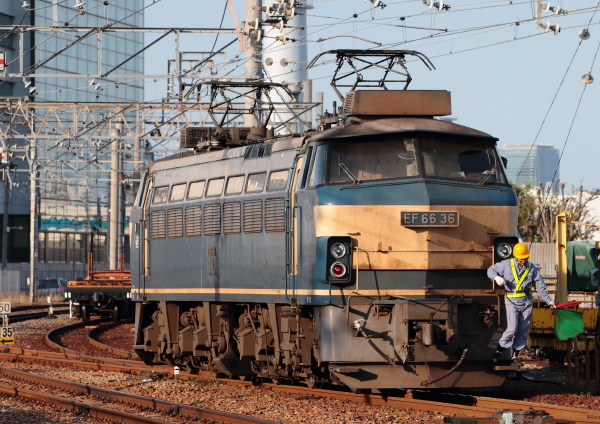 AM9P1556_1.jpg
